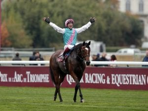 Enable to head to Yorkshire Oaks next