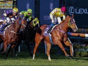 Malibu Style on target for Group 3 Aurie's Star
