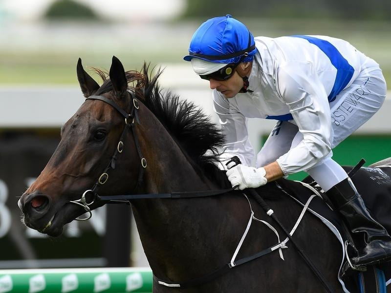 Zoustyle winning at Doomben.