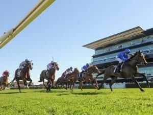 Roheryn makes winning return as a gelding