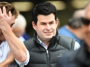 Dwyer's Doll ready to Rumble at The Valley