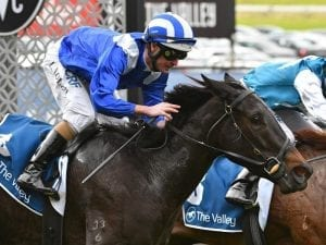 Taraayef impresses first-up at The Valley