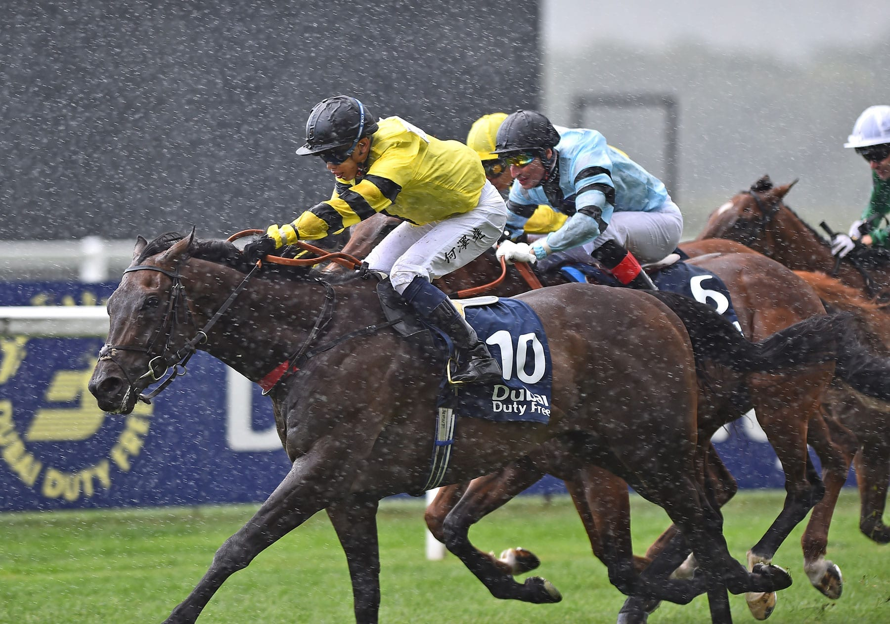 Hong Kong horse racing news | Horse Betting