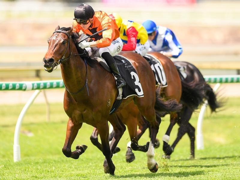 Jockey Jake Bayliss rides Pleased to victory in race 2 at Doomben