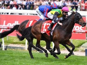 The Chosen One secures Caulfield Cup start