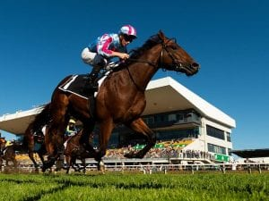 Dubious on target for G3 Blue Sapphire