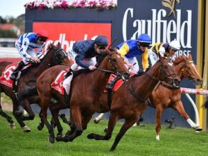 Cox Plate beckons for Cape Of Good Hope