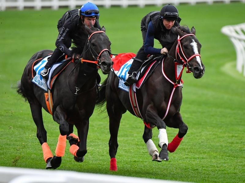Kluger (left) and Lys Gracieux in action at The Valley.