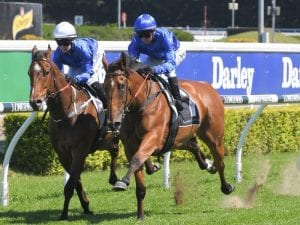 Alizee confirmed to run in The Everest