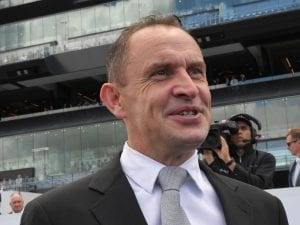 Waller says Yes Yes Yes to 3YO in Everest