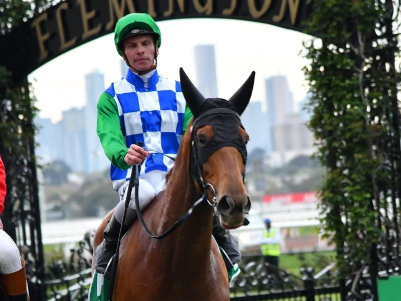 Edward Manifold Stakes winner Moonlight Maid.