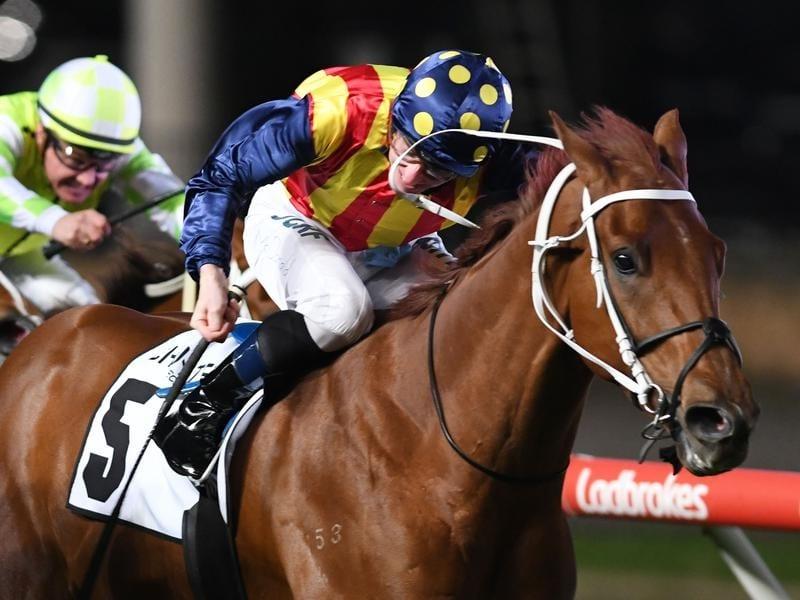 Jockey James McDonald rides Nature Strip to victory.