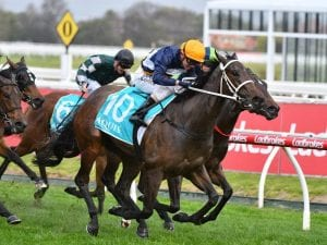 Three Guineas hopes for Busuttin and Young