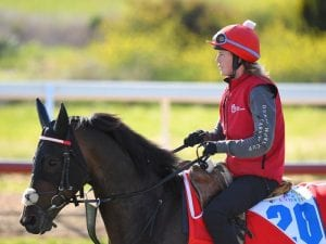 Internationals to step out at Caulfield