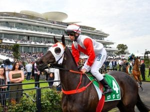 Trinder confirms Plate for Mystic Journey