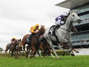 Hawkes Racing lands early Randwick double