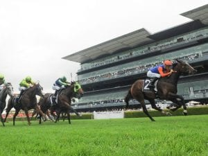 Nettoyer ready to eat up the Randwick mile