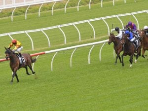 Colada pinches Group Two Stan Fox Stakes