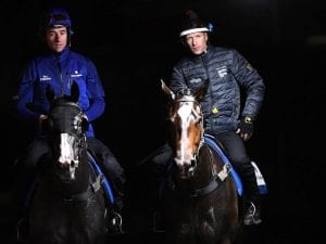 Cox Plate option kept open for filly Flit