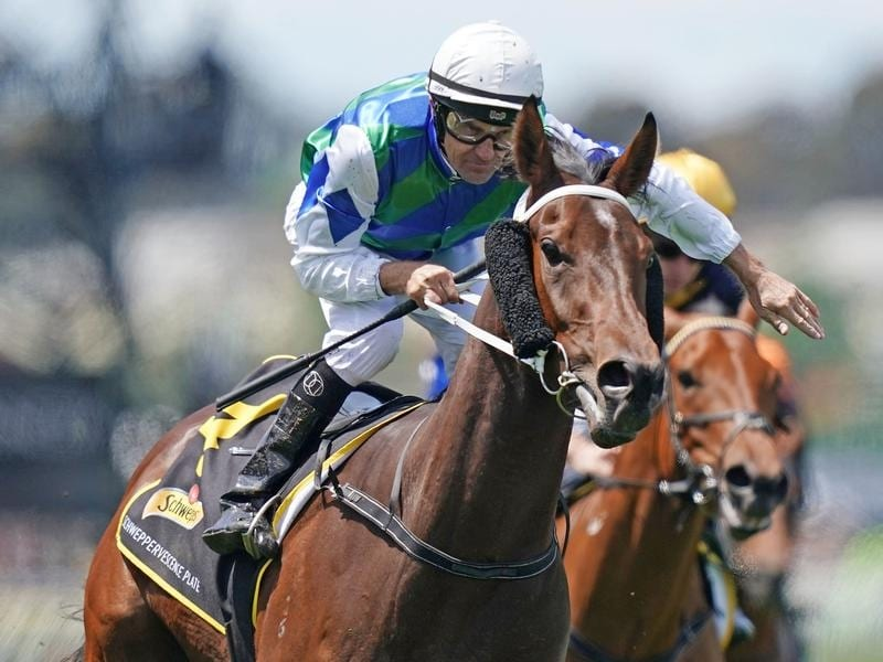 Garner wins at Flemington.