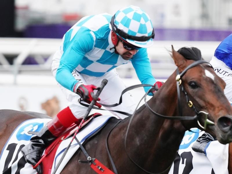 Reykjavik wins the Chatham Stakes at Flemington.