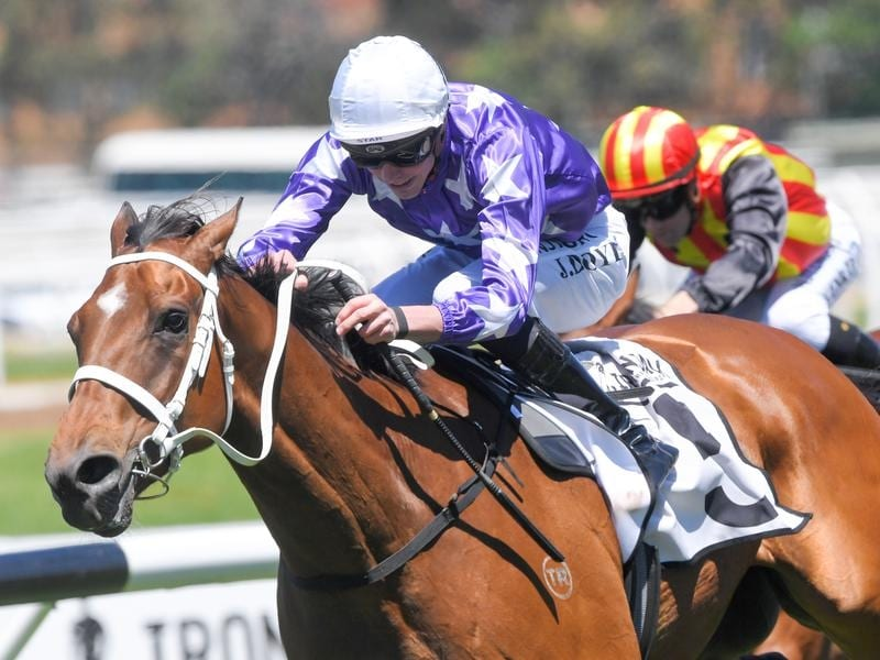 Humbolt Current wins at Rosehill for jockey James Doyle.