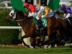 Horse racing betting online australia news sports betting tips complaints