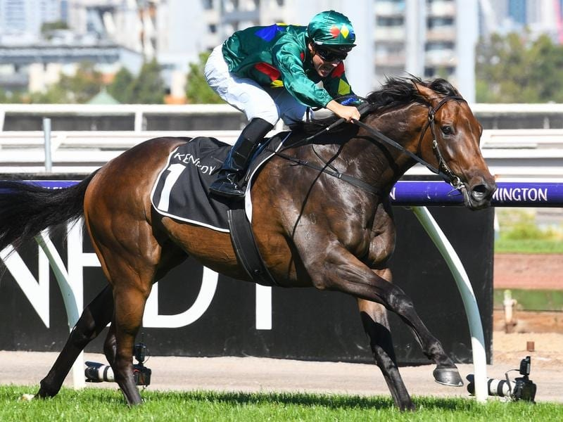 Ryan Maloney rides Alligator Blood to victory in race 7 at Flemington
