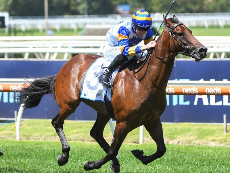 Adelaide Ace wins the Autumn Classic.