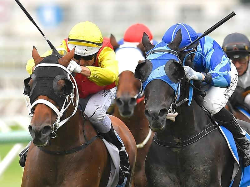 New Universe beat Spectroscope by a nose at Eagle Farm