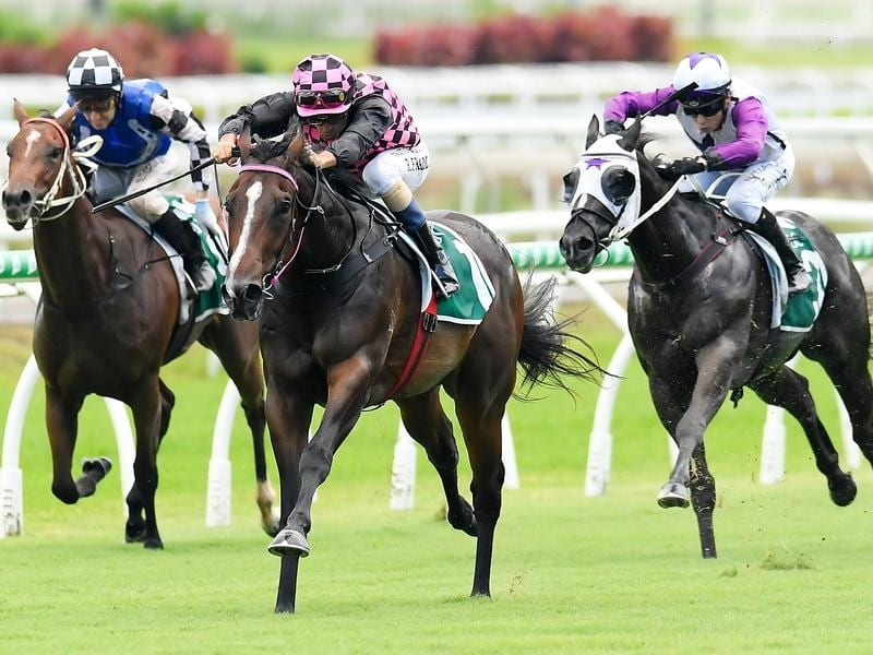 Rothfire wins at Eagle Farm.