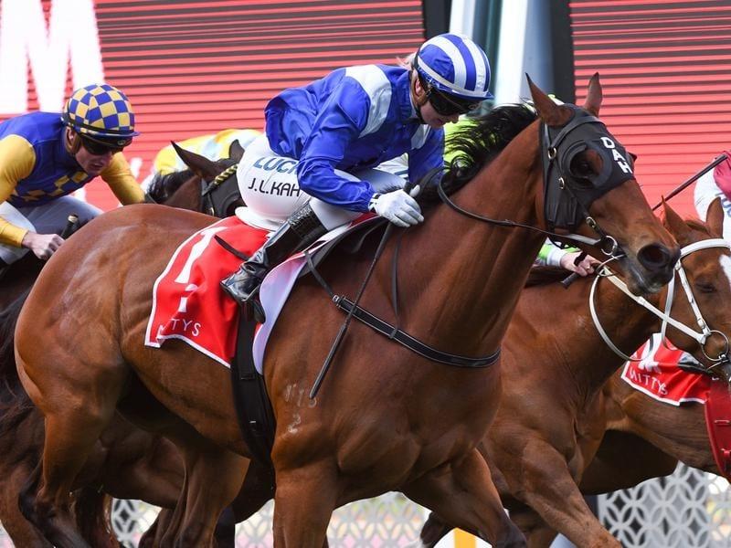 oakleigh plate betting online