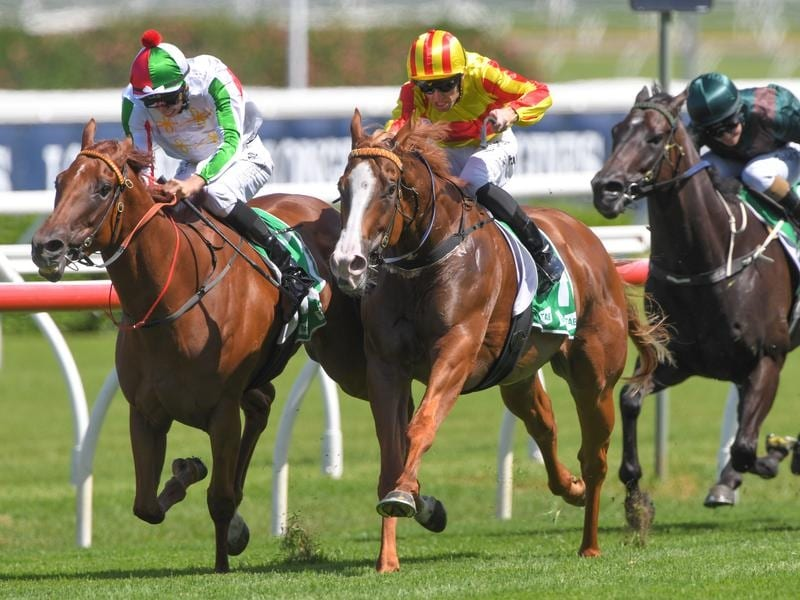 Joshua Parr rides Quackerjack to victory in race 4 at Randwick