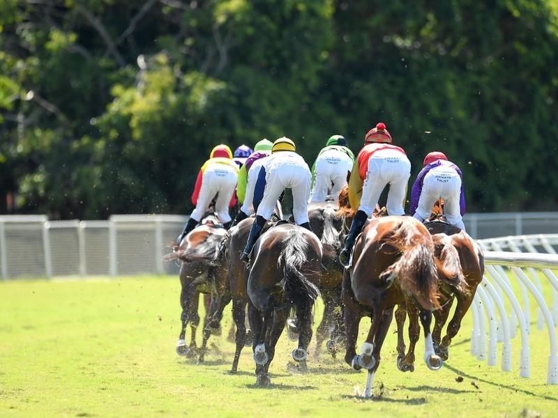 queensland jockeys