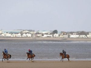 British horses to keep exercising