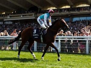 British horserace meets