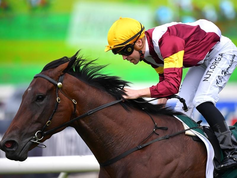 Shout The Bar wins the Vinery Stud Stakes.