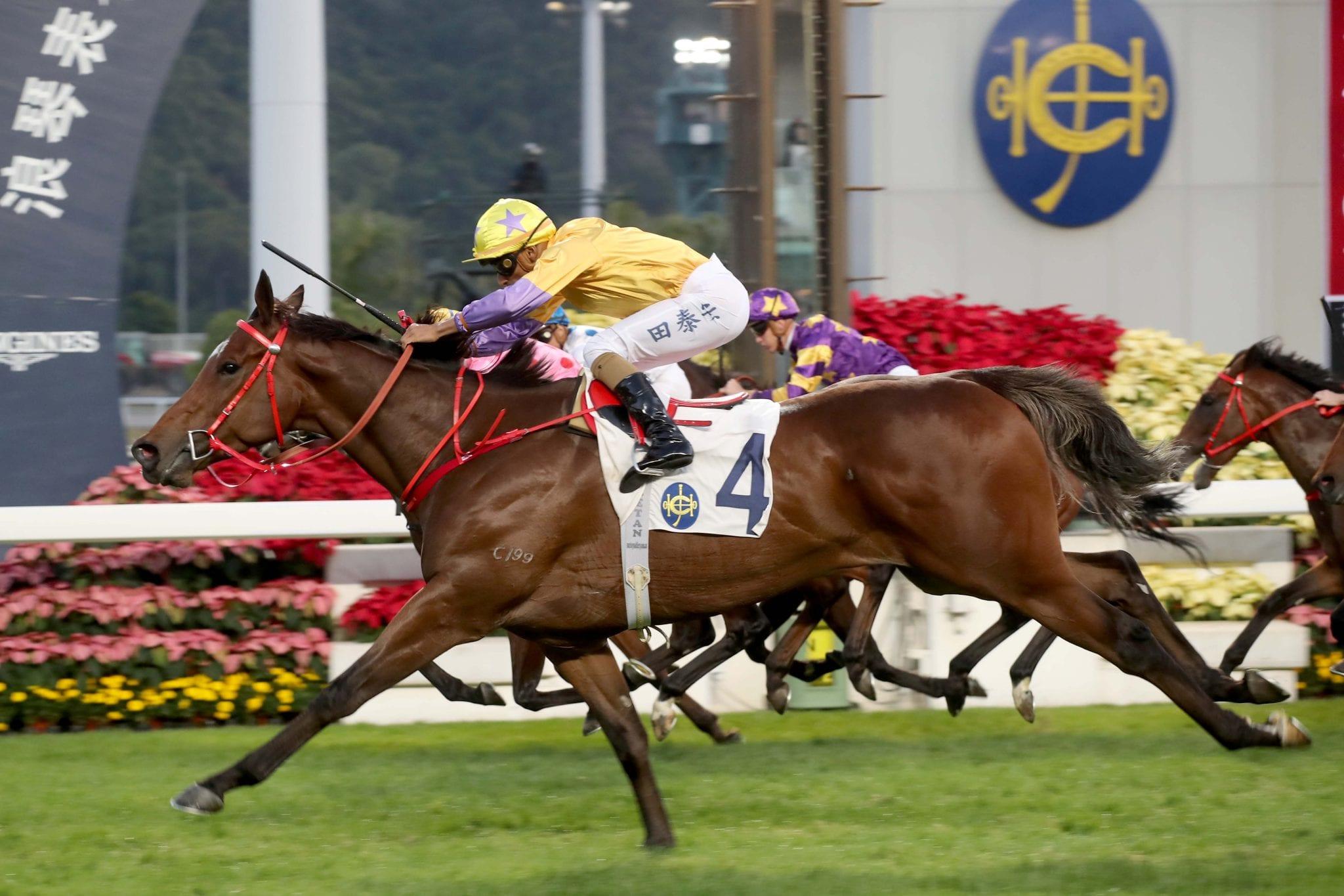 Go horse betting reviews on wen stewards enquiry bettingadvice