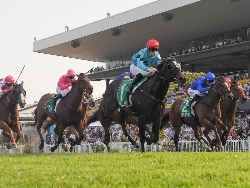 All aged stakes betting sites align commerce bitcoins