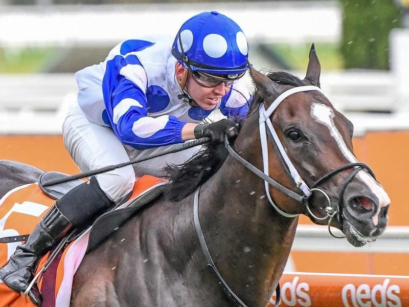 en Thompson rides Ancestry to victory in race 5 at Caulfield