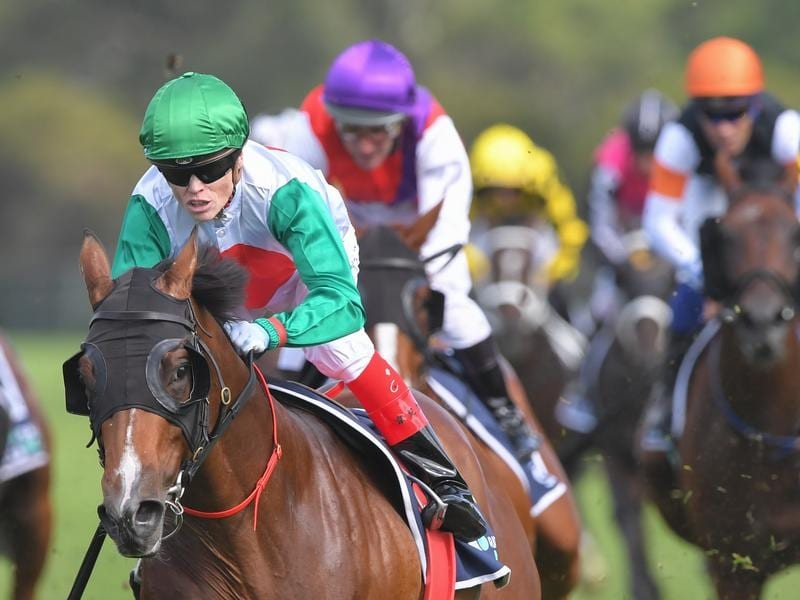 truth about horse racing australia betting