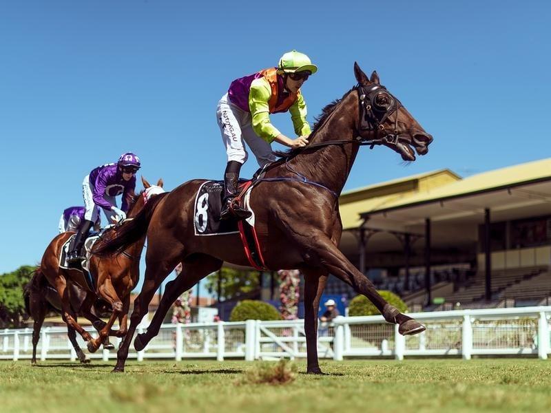 Horse racing betting utah betting odds calculator forecast