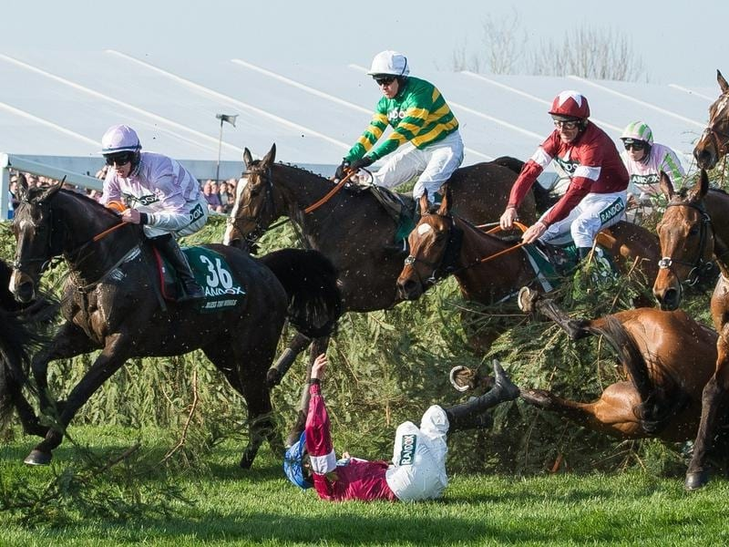 GrandNational action from 2018.