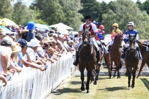 NZ proposed racing calendar