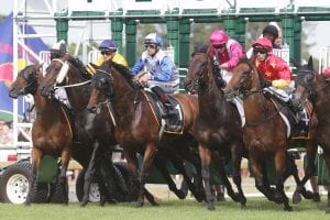 New Zealand racing resumes
