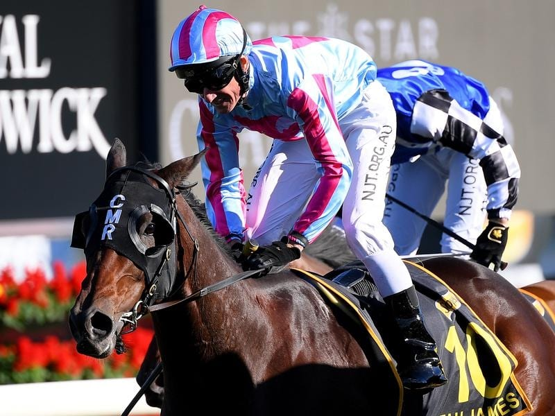 Melbourne cup odds betting site rossidis nicosia betting