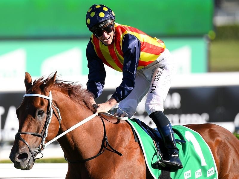 James McDonald rode Nature Strip to victory in the TJ Smith Stakes