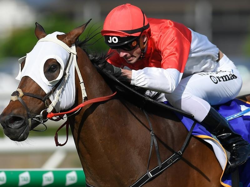Niccanova is Stradbroke Handicap bound after the Victory Stakes.