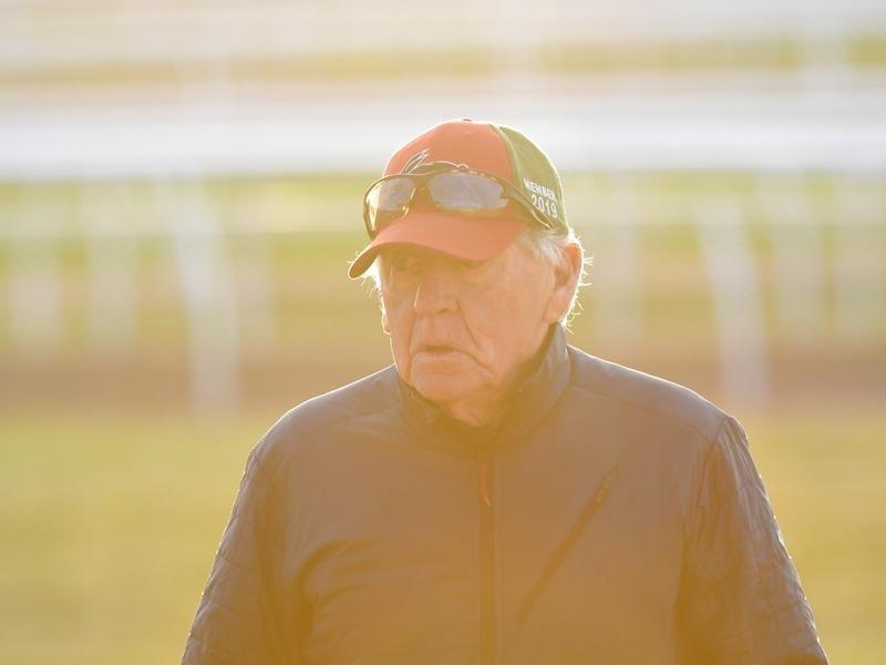 Randwick trainer Les Bridge.