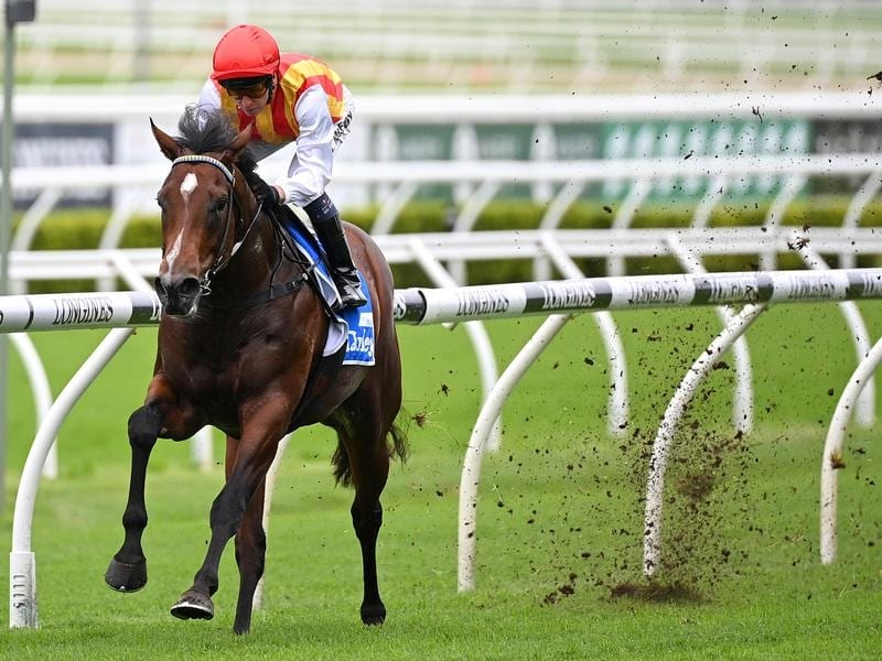 Peltzer ploughs through the mud to win at Randwick.
